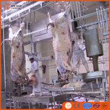 Bestiame pieno che macella riga attrezzatura di produzione del manzo di Halal