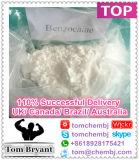 99.9% Poudre anesthésique locale CAS de benzocaïne de la qualité USP37 supérieure : 94-09-7