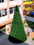 Große Weihnachtsbäume (DKT12M)