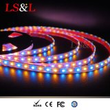 RGB+a Farbe, die LED Stringlight für Hom Beleuchtung ändert