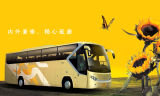2010先駆のバス(夢シリーズ)