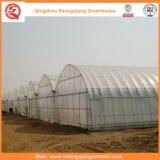 Agriculture Maison verte en matière plastique pour légumes / fleurs