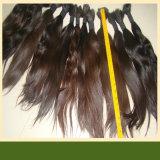 Podría ser virgen Remy cabello teñido de Brasil (B-16)
