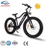 bici elettrica grassa del motore senza spazzola 250-350W