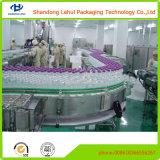 Machine de remplissage de bouteilles à grande vitesse de machine de remplissage de l'eau
