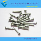 """Ongle concret de Nails/Steel (1/2 """" - 4 """")"""
