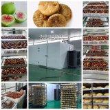 Промышленная машина для просушки фрукт и овощ сушилки машины для просушки плодоовощ