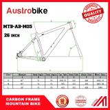 "Full Carbon Ud Matt Matte Mountain Bike MTB 26 ""Wheel Bsa Frame"