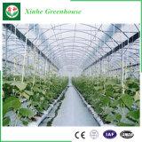 Vehículos/jardín/flores/casa verde de la película plástica de la granja con el sistema inteligente moderno