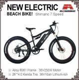 뚱뚱한 전기 눈 자전거 바닷가 함 전기 자전거 250W 350W 500W 36V 48V