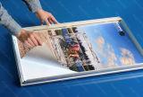 Casella chiara illuminata della visualizzazione di alluminio del blocco per grafici