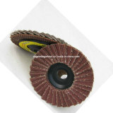 Disco della falda, rotella della falda, disco della falda per acciaio inossidabile