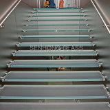 강화 유리 계단