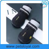 Pattini del cane con Velcro riflettente e la suola antiscorrimento robusta