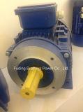 Di CA del motore IP55 IP54 alto Efficienct 22kw motore elettrico a tre fasi di induzione 380V