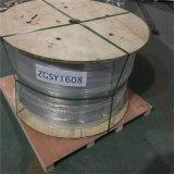 ASTM 304 tubes en acier inoxydable soudés de la bobine de la Chine fournisseur Tuyau en acier inoxydable