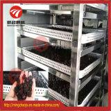 중국 스테인리스 열기 나물 건조용 장비