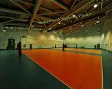 Cheap PVC intérieur/extérieur volley-ball professionnel étage-10mm utilisé