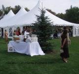 15X25m 백색 결혼식 천막 판매를 위한 특별한 천막 디자인