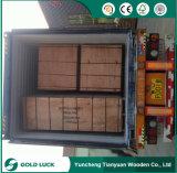 1220x2440mm Venta caliente melamina negro ante la construcción de madera contrachapada de Combi