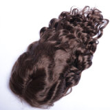 #4人間の毛髪のかつらのアフリカ系アメリカ人のためのブラジルの緩い波の方法様式のレースの前部かつらの人間の毛髪を着色しなさい