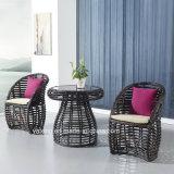 Precio competitivo de la PE-Rota para cualquier estación con los muebles al aire libre de calidad superior del jardín que cenan Chair&Table fijado (YT673)
