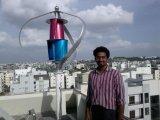 sistema ligero vertical de la turbina de viento 400W LED