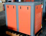 Compressori d'Esecuzione della Rotativo-Vite e compressori d'aria della Gemellare-Vite