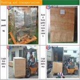 Máquina de empacotamento automática do alimento da fatia do coco