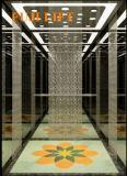 Удобный и стабилизированный лифт пассажира