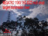 Toren van de Transmissie van de Raaklijn van de Kring 1h2-Ssz3 van Megatro 110kv de Multi