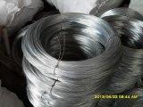 직류 전기를 통한 Iron Wire는 Hot Sale에 중국제 있다