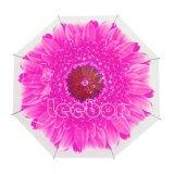 مظلة زهرة طبق شفّافة [بو] مظلة ترويجيّة واضحة