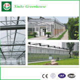 Invernadero cubierta del policarbonato/de la hoja usadas venta de la PC para Growing de flor