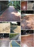 L'eau pavés perméables pour allées de passerelle Patio Gardon (Paving Stone)
