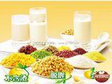 가득 차있는 스테인리스 콩 우유 제작자