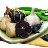 Alho preto inteiro dos antioxidantes mais elevados para o alimento delicioso