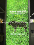 アルミニウムFrameless FabricおよびTextile Advertizing Light Box