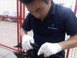 Третья сторона сортировка переделки служб в Китае
