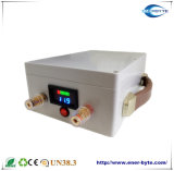 Batterie rechargeable LiFePO4 12V 40Ah