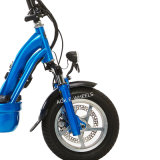 "1000W 12 "" Folding Electric Bike met Disk Brakes (mes-013)"