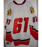 Настроить Qmjhl Байе Comeau Drakkar 2009-11 Джерси мужская дети женщин 37 Майкл DuPont хоккей дешевые футболках Nikeid Goalit горячей резки продажи