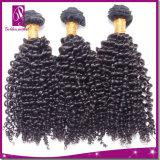 100% de extensão de cabelo Kinky Curl Cabelo virgem