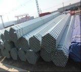 Q235 Pre-Galvanizado alrededor del tubo de acero del diámetro del acero Tube/48.3mm para el edificio