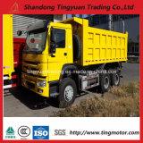 Sinotruk HOWO 6*4 336HP 고품질을%s 가진 디젤 엔진 덤프 트럭