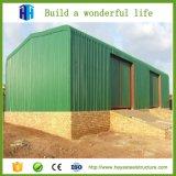 Structure en acier à faible coût de la conception de la volaille Hangar agricole de la construction de l'entrepôt