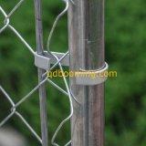 XXL Kettenlink-Zaun-im Freien große Hundeübungs-Haustier-Feder