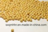 Сухие соевые бобы желтого цвета