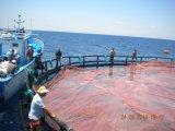 Cage de flottement en mer profonde