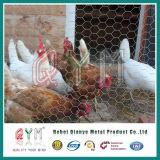 O engranzamento de fio sextavado soldou gaiolas galvanizadas caixa da galinha de Gabion